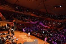 ネギライトで埋め尽くされたりゅーとぴあ新潟市民芸術文化会館 コンサートホール。