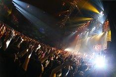 スガシカオ「SUGA SHIKAO LIVE TOUR 2015 『THE LAST』」12月26日の東京・Zepp DiverCity TOKYO公演の様子。(撮影:中河原理英)