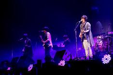 「flumpool COUNTDOWN LIVE 2015→2016『ヒツジの皮を被ったサルたちの歌合戦』」12月30日公演の様子。(撮影:上飯坂一)