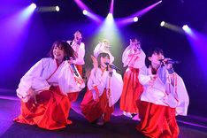 「アップアップガールズ(仮) CD/J 15-16 カウントダウンジャンパー!」の様子。