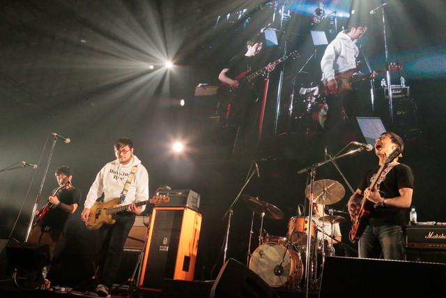 HUSKING BEE(写真提供:rockin'on japan)