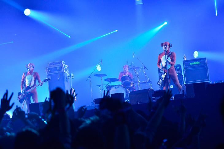 12月31日、EARTH STAGEでカウントダウンを務めた10-FEET。(写真提供:rockin'on japan)