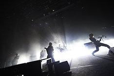the GazettE「LIVE TOUR 15-16 DOGMATIC -DUE-」の模様。(提供:ソニー・ミュージックレコーズ)