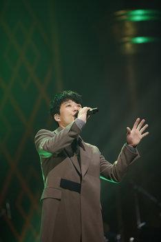 「星野源 LIVE TOUR 2016『YELLOW VOYAGE』」ニトリ文化ホール公演の様子。(撮影:五十嵐一晴)