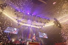 和楽器バンド「大新年会2016 日本武道館 -暁ノ宴-」の様子。(写真提供:エイベックス・ミュージック・クリエイティヴ)