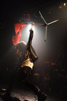 ASH DA HERO(撮影:前田俊太郎)