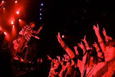 フレデリックのライブの様子。(Photo by Viola Kam [V'z Twinkle])