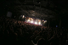 LAMP IN TERRENのライブの様子(Photo by Viola Kam [V'z Twinkle])