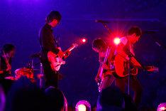 「Mr.Children Stadium Tour 2015 未完」日産スタジアム公演の様子。(撮影:石渡憲一)