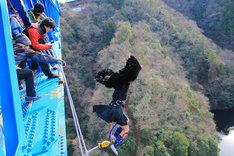 勇気をもってバンジーを飛ぶ柳沢あやの。(写真提供:AqbiRec)