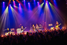 「『G4・IV』Presents Special Live Scoop! ~ZeppがZombieであるために2016~」の様子。(撮影:岡田裕介)