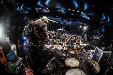 NOCTURNAL BLOODLUSTのライブの様子。(Photo by Shumpei Kato)