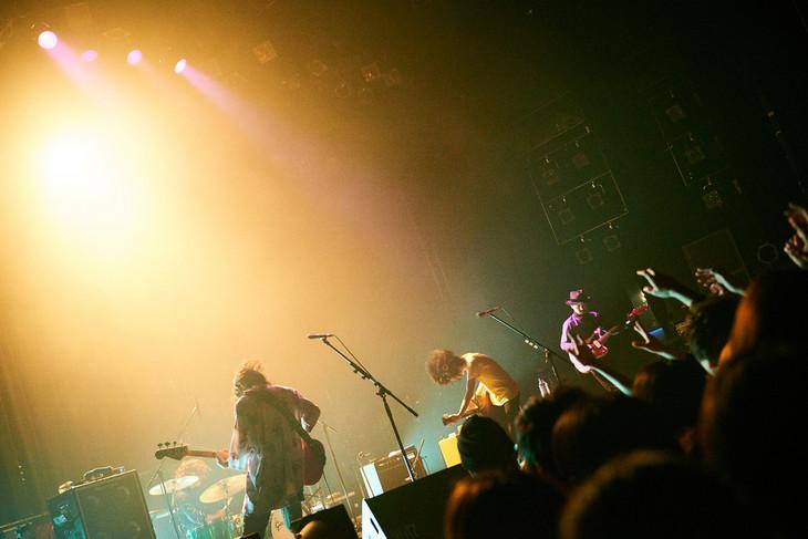 クリープハイプ「全国ライブハウスツアー『わすれもの~つま先はその先へ~2016』」東京・赤坂BLITZ公演の様子。(撮影:神藤剛)