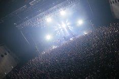 "「OKAMOTO'S TOUR 2015-2016 ""LIVE WITH YOU""」Zepp DiverCity TOKYO公演の模様。(撮影:柴田恵理)"