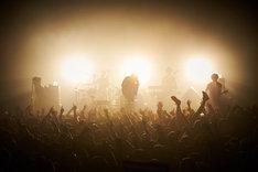 the HIATUSのライブの様子。(撮影:三吉ツカサ)