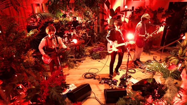 go!go!vanillas「Kameleon Live」のワンシーン。
