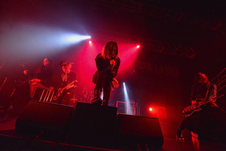 写真は「TOUR ULTRA -The Loud Engine-」東京・EX THEATER ROPPONGI公演の様子。(撮影:河本悠貴)
