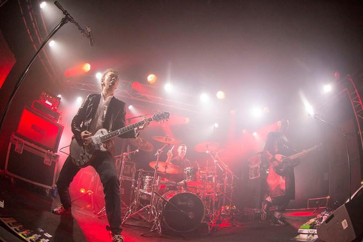 2月9日(現地時間)に行われたヨーロッパツアー「STRANGERS TOUR」フランス・パリ公演の様子。(撮影:山本倫子)