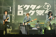 THE BAWDIES(Photo by Rui Hashimoto[SOUND SHOOTER])