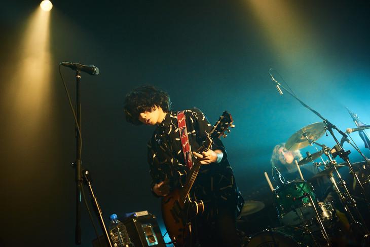 クリープハイプ「たぶんちょうど、そんな感じ」東京・Zepp Tokyo公演の様子。(撮影:神藤剛)