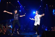 踊るチュートリアルの徳井義実(左)とBLUE ENCOUNTの田邊駿一(右)。(撮影:釘野孝宏)