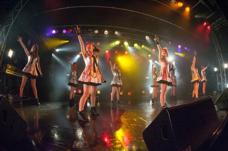 「Cheeky Parade 4周年記念LIVE@BLAZE」の様子。(写真提供:エイベックス・ヴァンガード)