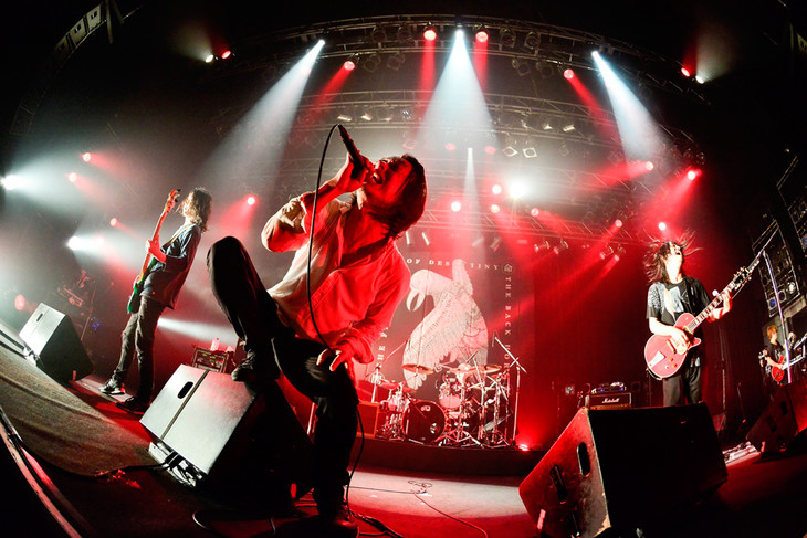 THE BACK HORN(Photo by Rui Hashimoto[SOUND SHOOTER])