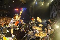 "WANIMA「Are You Coming? Tour Final」の様子。(Photo by Yuji""本田本""Honda)"