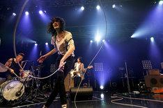 2015年12月の東京・Zepp DiverCity TOKYO公演でのドレスコーズ。(Photo by HAJIME KAMIIISAKA)