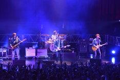 """NICO Touches the Walls「NICO Touches the Walls TOUR 2016 """"勇気も愛もないなんて""""」初日公演の様子。"""