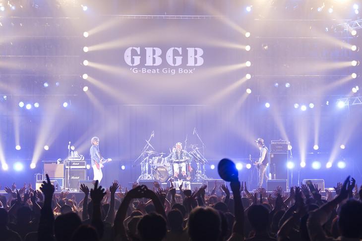 「GBGB2016」メインビジュアル