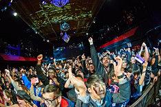 ニューヨーク・IRVING PLAZA公演の様子。(Photo by:KEIKO TANABE / TAMARUYA)