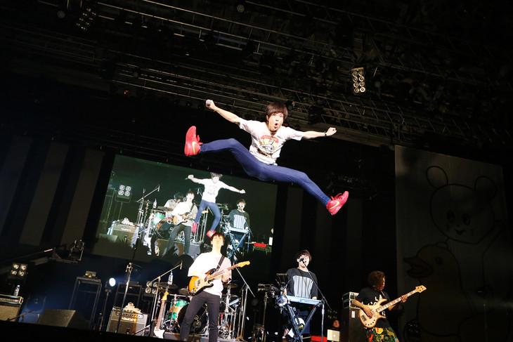 キュウソネコカミ「DMCC REAL ONEMAN TOUR -EXTRA!!!-」千葉・幕張イベントホール公演の様子。(Photo by Viola Kam [V'z Twinkle Photography])