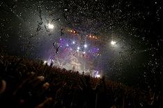 SUPER BEAVER「SUPER BEAVER10周年記念〆『都会のラクダSP ~スーパーフィーバー~』」東京・Zepp DiverCity TOKYO公演の様子。(Photo by Suzuki Kouhei)