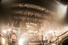 SUPER BEAVER「SUPER BEAVER10周年記念〆『都会のラクダSP ~スーパーフィーバー~』」東京・Zepp DiverCity TOKYO公演の様子。(撮影:青木カズロー)