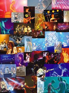 「BUMP OF CHICKEN結成20周年記念Special Live『20』」通常盤ジャケット