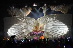 ステージ中央に吸い込まれていく白幕。