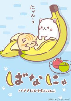 テレビアニメ「ばなにゃ」キービジュアル