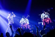 MONKEY MAJIKと吉田兄弟のセッションの様子。