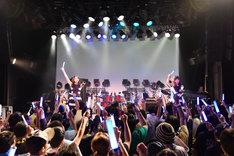 WHY@DOLLワンマンライブ「SUMMER~MUSIC OF(EN)JOY~」の様子。