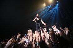 BRAHMANによるライブの様子。(写真提供:ディアステージ)