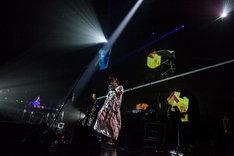 「illion Japan Tour 2016」新木場STUDIO COAST公演の様子。(撮影:鳥居洋介)