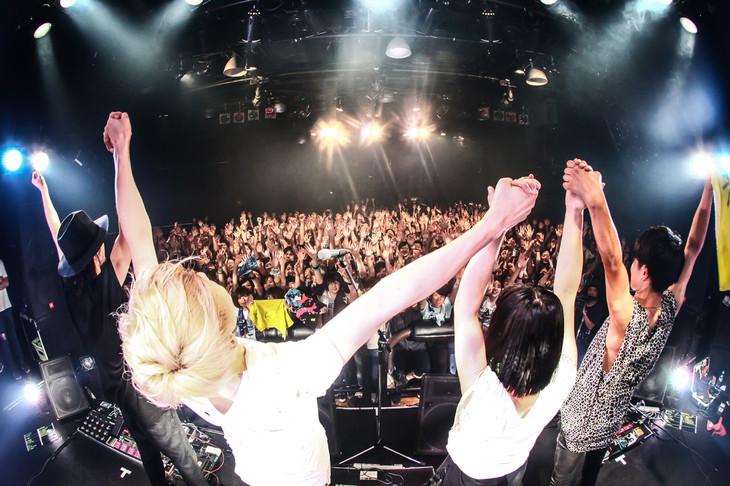 HaKU「HaKU Last Tour『最後まで踊れ。』」東京・UNIT公演の様子。(Photo by TAMAI SHINGO)