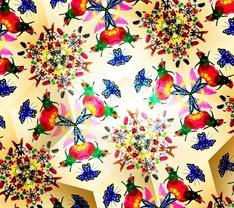 FLOWER FLOWER「宝物」初回限定盤ジャケット