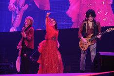 Minami (c) Animelo Summer Live 2016/MAGES.