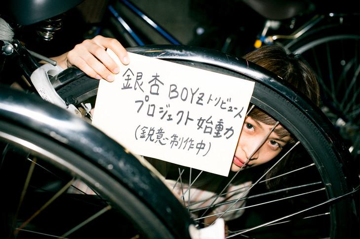 川島小鳥の撮り下ろしによる「銀杏BOYZトリビュート プロジェクト始動」告知ビジュアル。