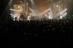 [nZk]004ライブ、Aimer登場時の様子。(写真提供:SME Records)