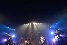 ストレイテナー(撮影:佐藤広理)