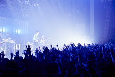 「米津玄師 2016 TOUR / はうる」東京・Zepp Tokyo公演の様子。(撮影:中野敬久)