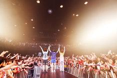 12月11日に行われた「SHISHAMOワンマンツアー2016秋『夏の恋人はもういないのに、恋に落ちる音が聞こえたのはきっとあの漫画のせい』」Zepp Tokyo公演の様子。(撮影:岡田貴之)